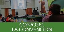 COPROSEC - La Convención